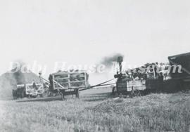 Harvest - Threshing Scene