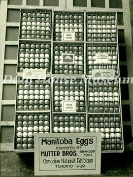 Manitoba Eggs Exhibited By Mutter Bros Grocery Store