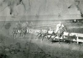E.J. (Ted) Rowe Horse Racing