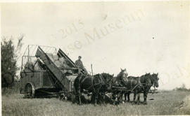 Mr. Lau on the First Sheaf Loader in the Justice, Manitoba Area